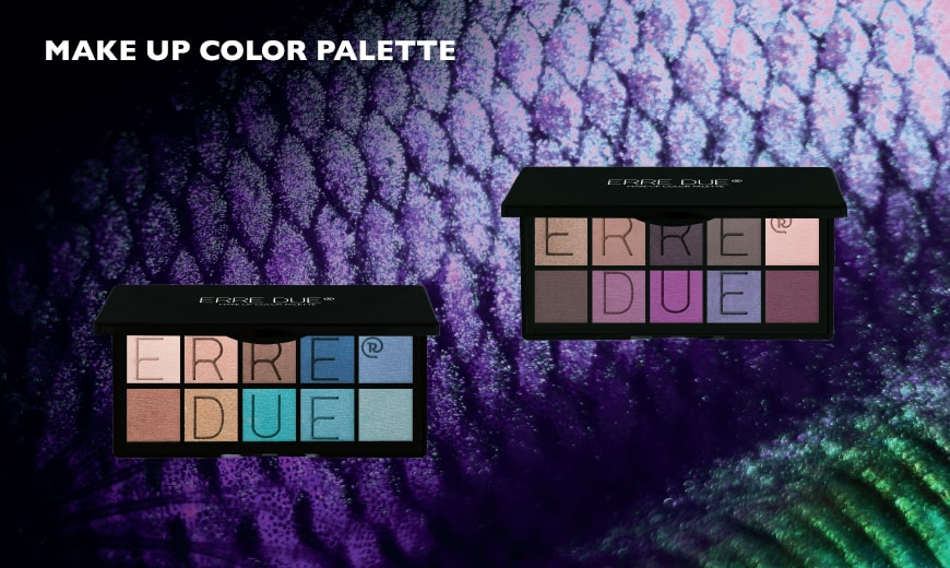 MAKE UP COLOR PALETTE